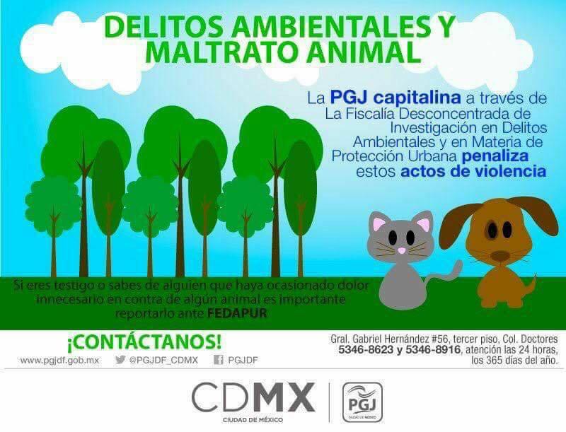 CONTACTOS CDMX