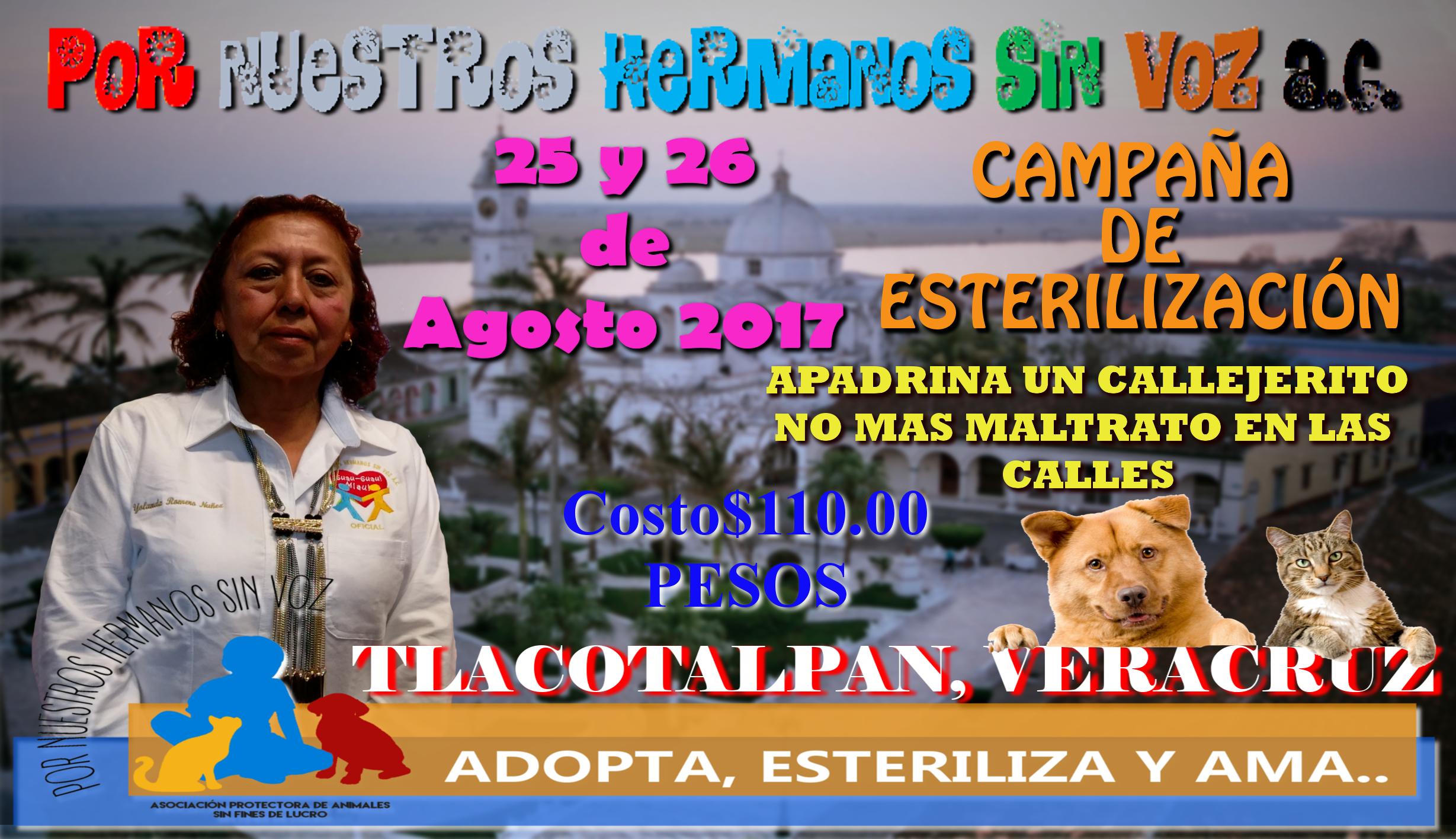 25 y 26 agosto campaña